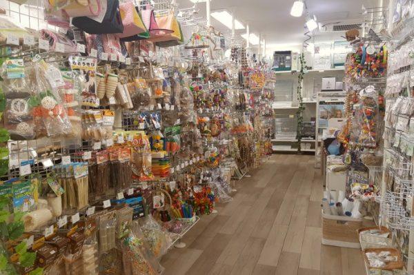 BIRDMORE 南青山店の店内 おもちゃがいっぱい