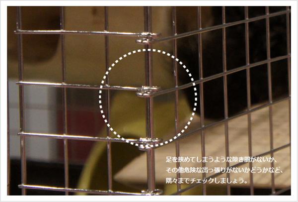 チンチラにとって理想的なケージを選ぶポイント ケージの接合部もチェックしよう