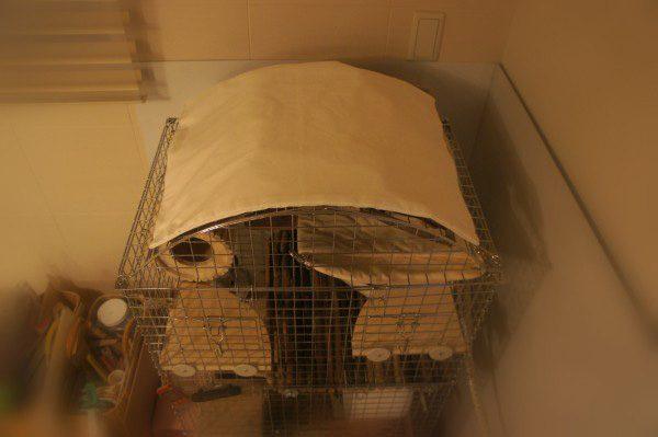 チンチラのティモのケージレイアウト ケージ屋根カバーは手作り