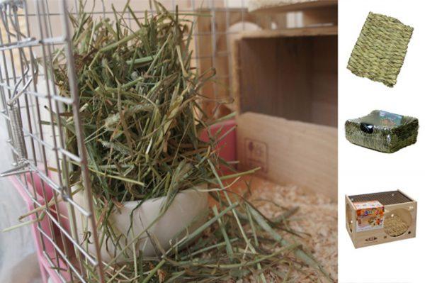 チンチラのティモの牧草ポット 1日2回山盛り