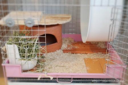 チンチラのティモのケージの床環境