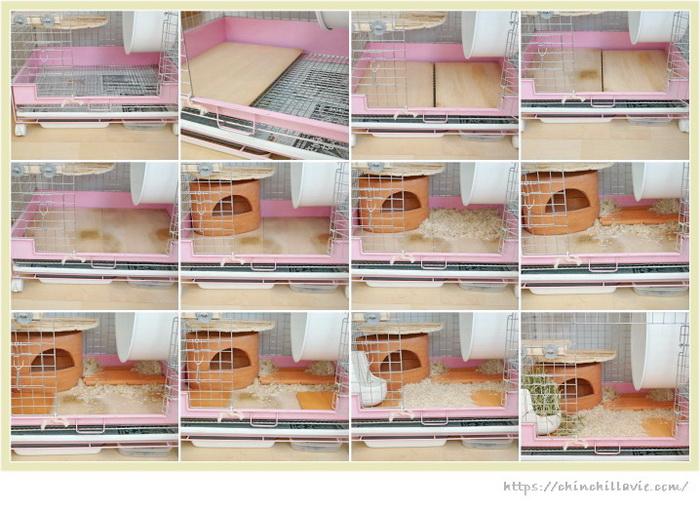 チンチラのティモのケージ床環境を整える手順