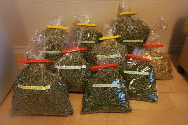 チンチラのティモに与えている牧草の数々 ティモの飼育方法