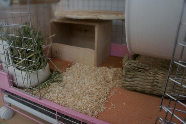 チンチラのティモのケージレイアウト お迎えする前に準備するものリスト 床材