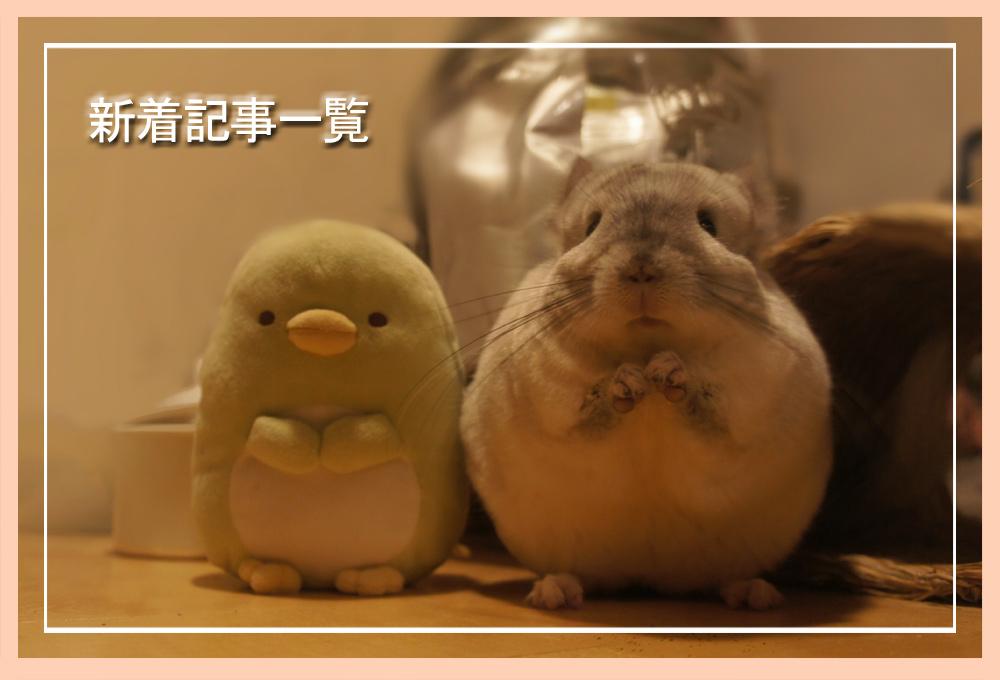 ChinchillaVie -チンチラ「ティモ」とこだわり屋の生活- 新着記事一覧
