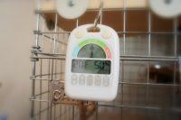 チンチラのティモの温湿度計 メリー