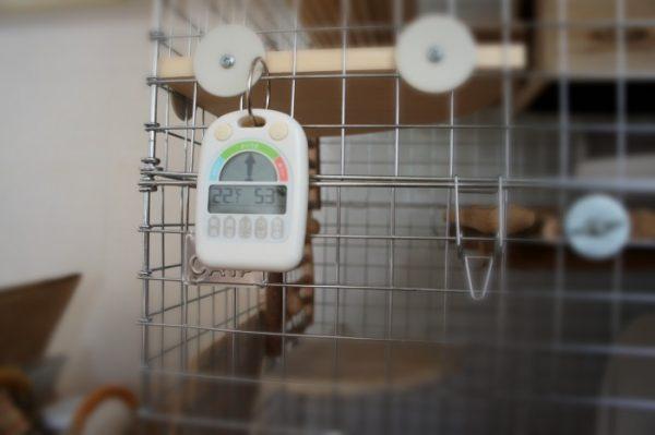チンチラのティモの現在の温湿度計 ノア精密 デジタル温湿度計 メリー N-025 WH-Z