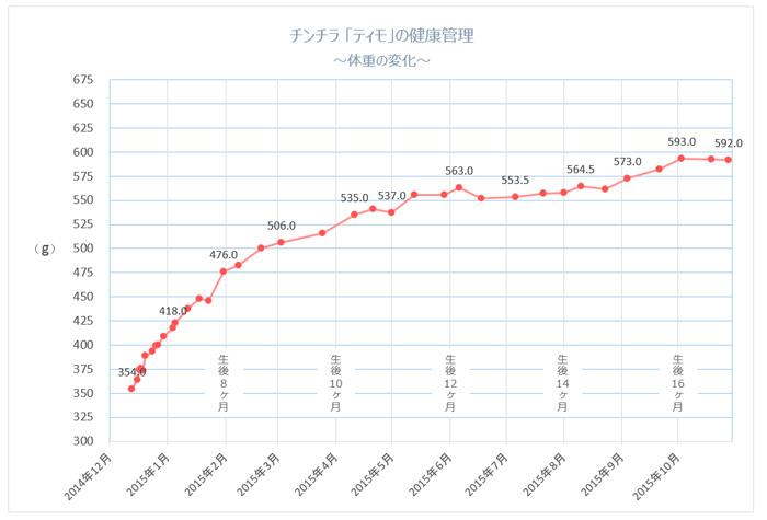 チンチラのティモの健康管理 体重の変化 生後6ヶ月から生後16か月までのグラフ