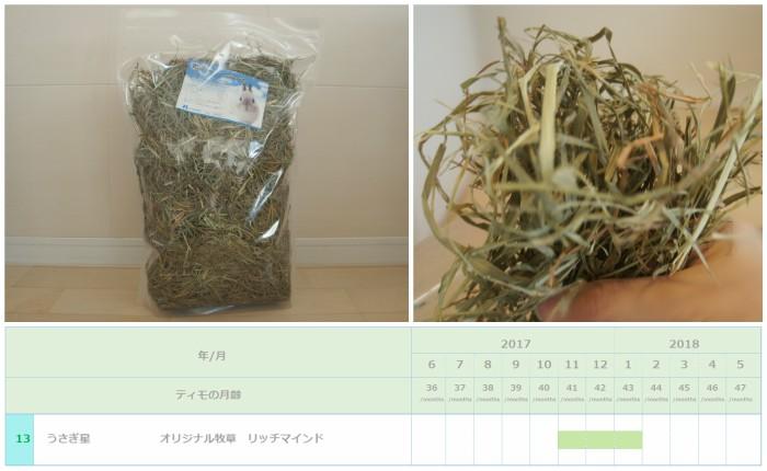 トッピング牧草としてチンチラのティモ(3歳)に与えたチモシー2番刈り うさぎ星 リッチマインド