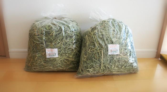 チンチラのティモのお気に入り牧草 バニーファミリー金沢本店さんのチモシー1番刈り