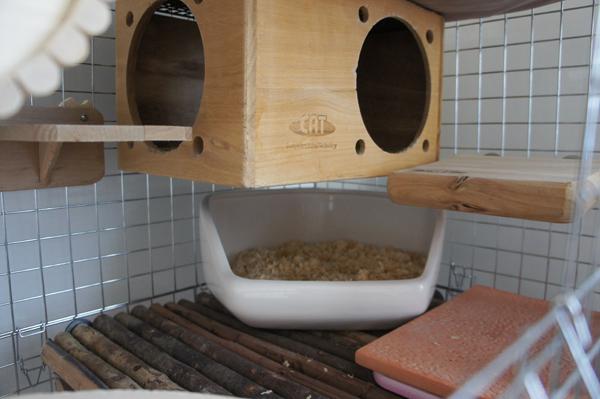 チンチラのティモの寒さ対策 床面を温める