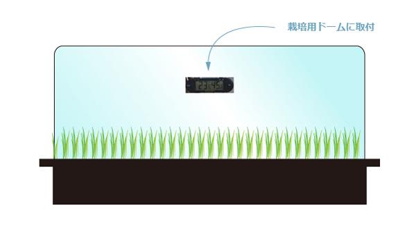 mondi thermo-hygrometer ミニグリーンハウスに取り付けたイメージのイラスト